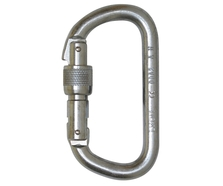 10mm Foin D Steel Screwgate Karabiner (Serialised)